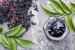 elderberry autumn jam