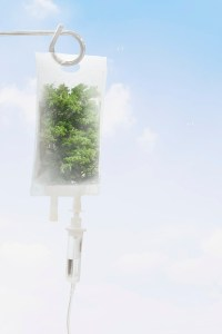 Fresh air from trees in IV bag