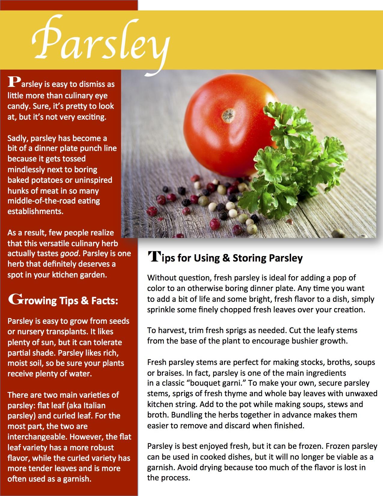 Herb Gardening 101: Growing Parsley