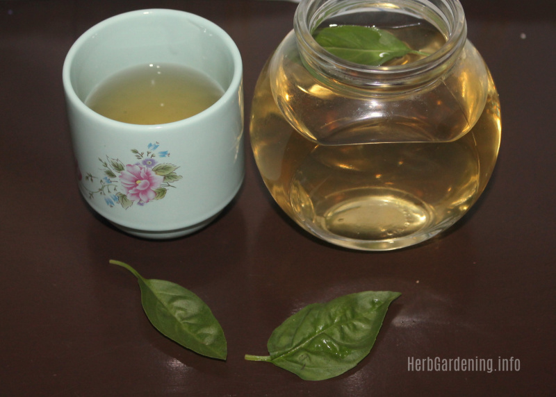 Simple Recipe for Stress Busting Basil Tea