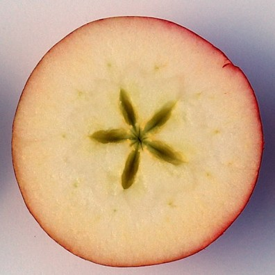 Apple-half