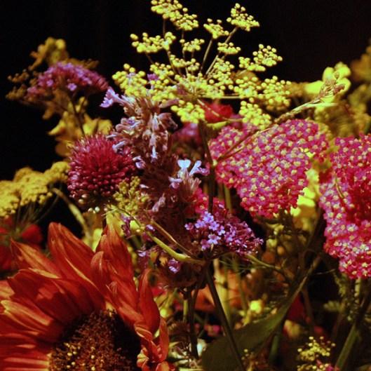 Cut_flowers