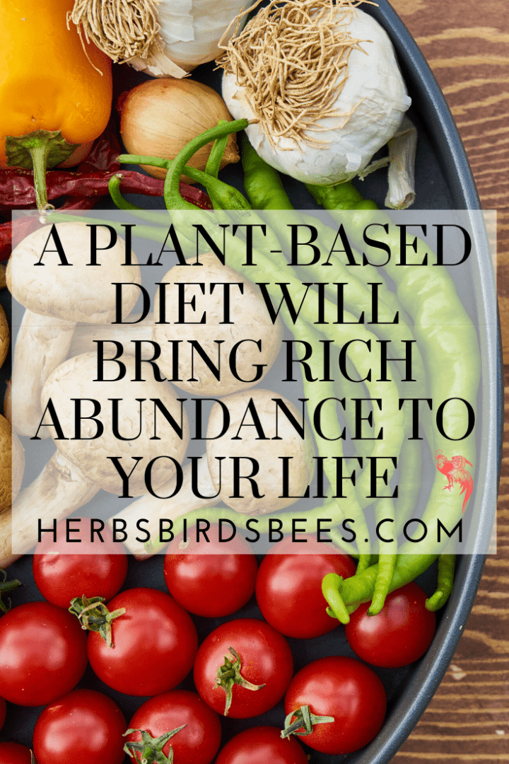 A Plant-Based Diet Will Bring Rich Abundance to Your Life