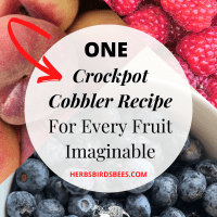Crock-Pot Cobbler Recipe For Whatever Fruit You're Craving