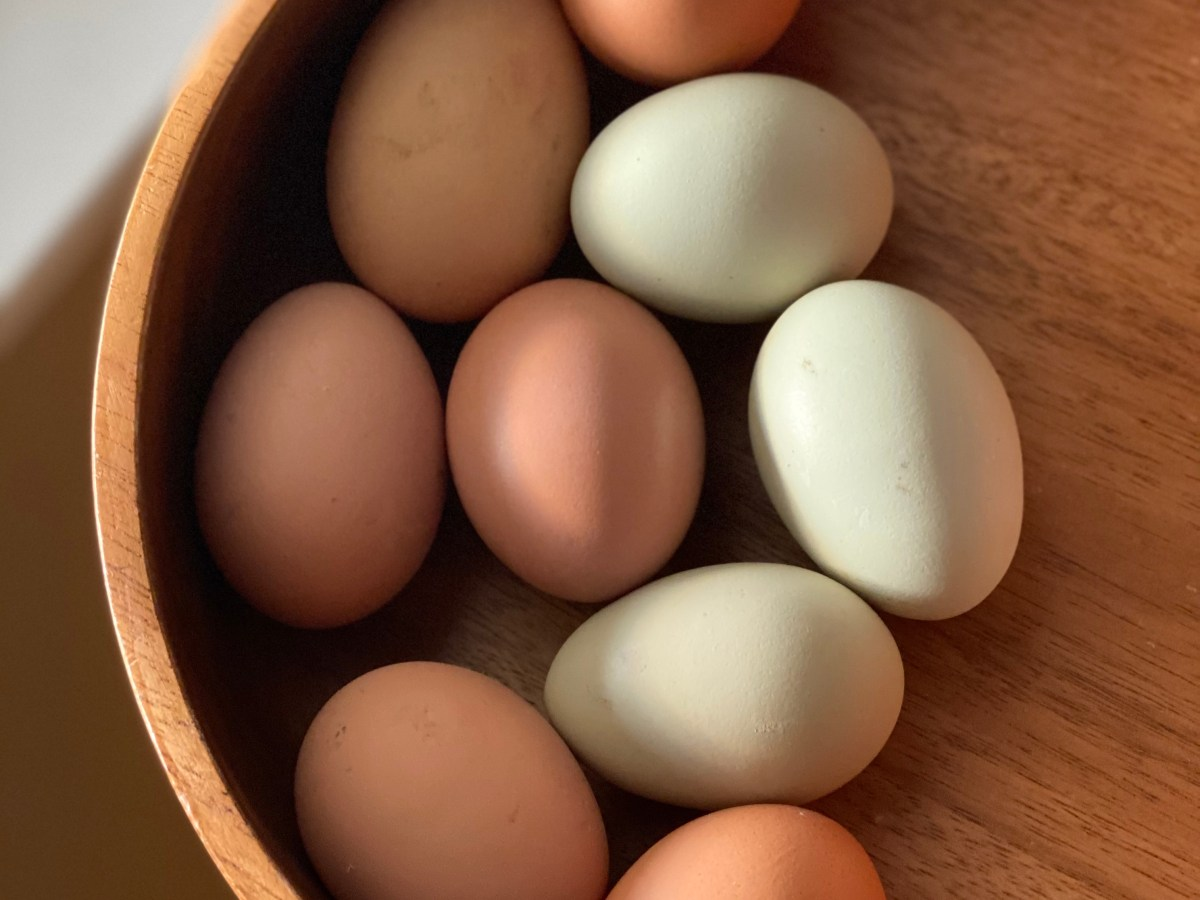 Fresh Eggs in A Warm Wooden Bowl