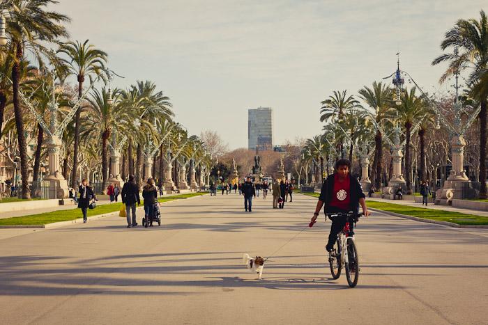 barcelona2-031