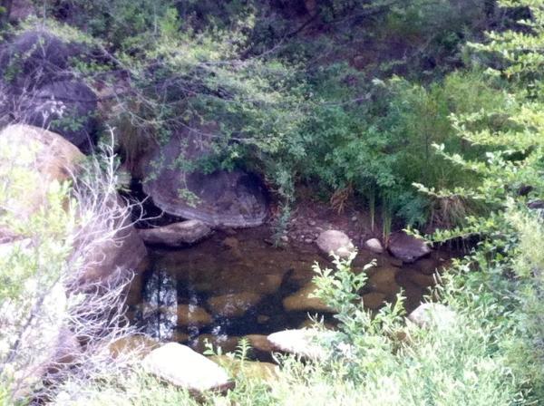 Piedra Blanca Creek below campsite