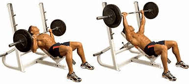 Incline Bench Chest Exercise