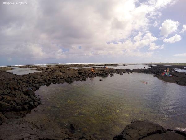 夏威夷大島浮潛
