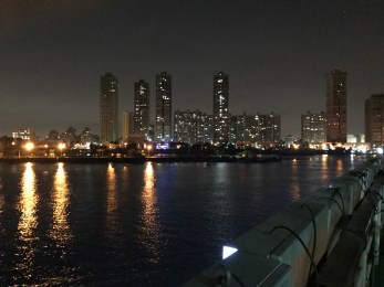 Cairo's skyline as seen from the dinner cruise on the Nile