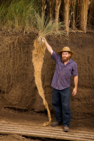 U.S. Botanic Garden Exposes the Secret Life of Roots
