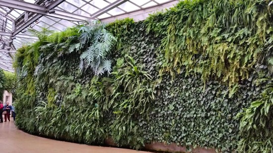 Photo: Longwood Gardens Green Wall/herebydesign.net