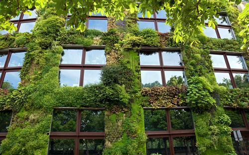 Quai Branly Museum: Veniamin Kraskov/Shutterstock.com