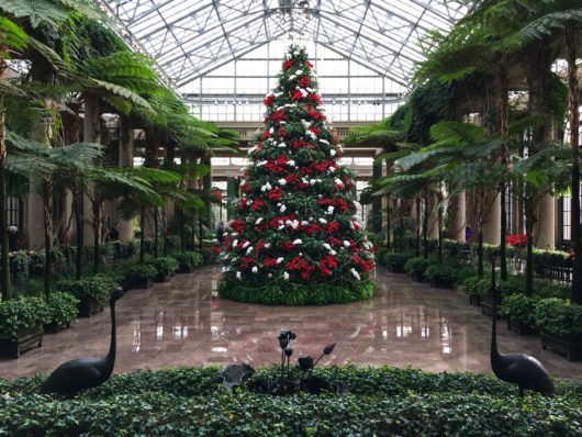 Longwood Gardens 2016 Photo credit: Here By Design