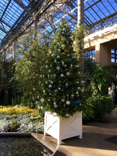 East Conservatory/A Longwood Christmas