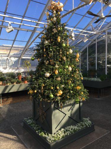 Fruit House/A Longwood Christmas