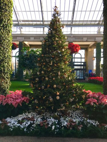 Main Conservatory/A Longwood Christmas