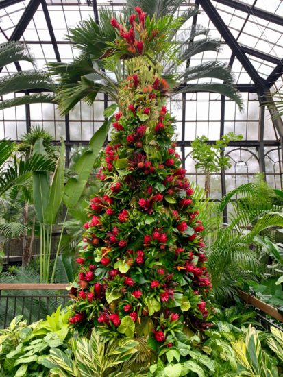 Longwood Gardens Christmas.10 Great Christmas Tree Ideas From Pennsylvania S Longwood