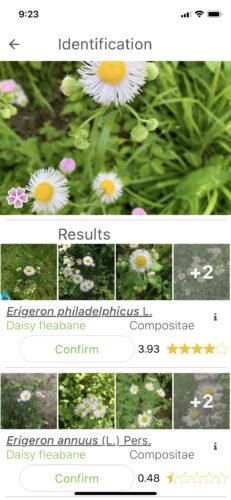 PlantNet plant identification app