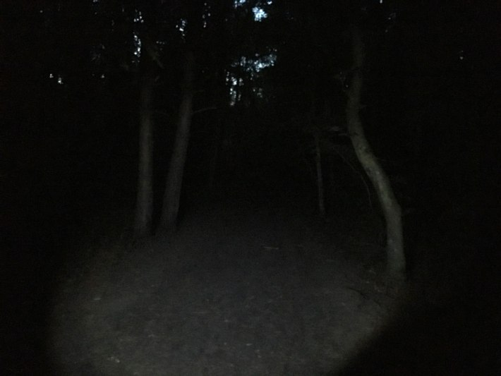 Night Geocaching