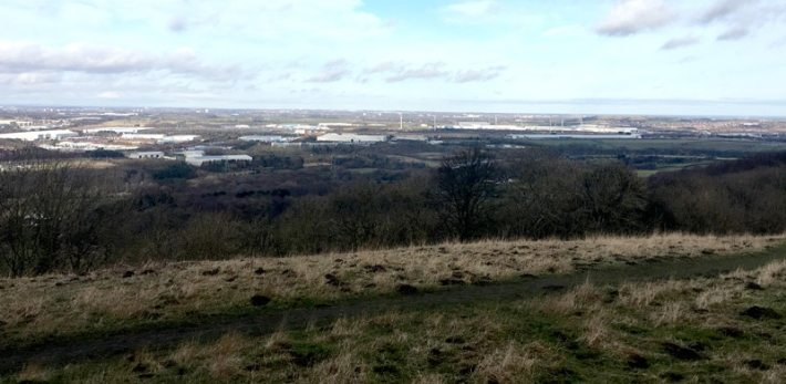 View from Penshaw Monument