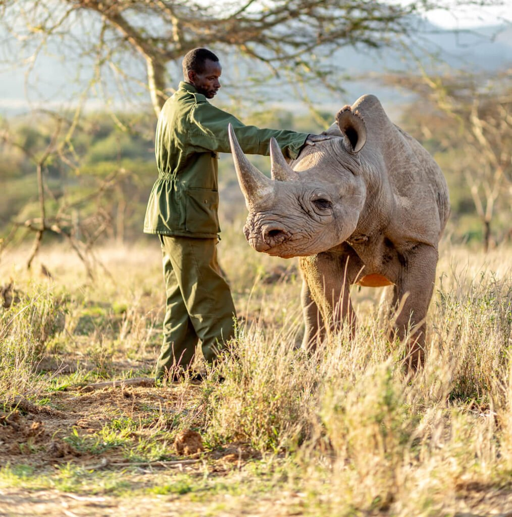 Rhino Ol Jogi Wildlife Conservancy