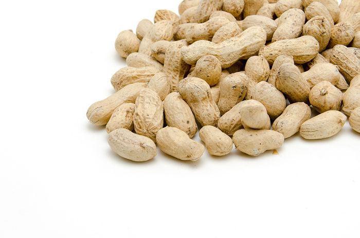 can cats eat peanuts