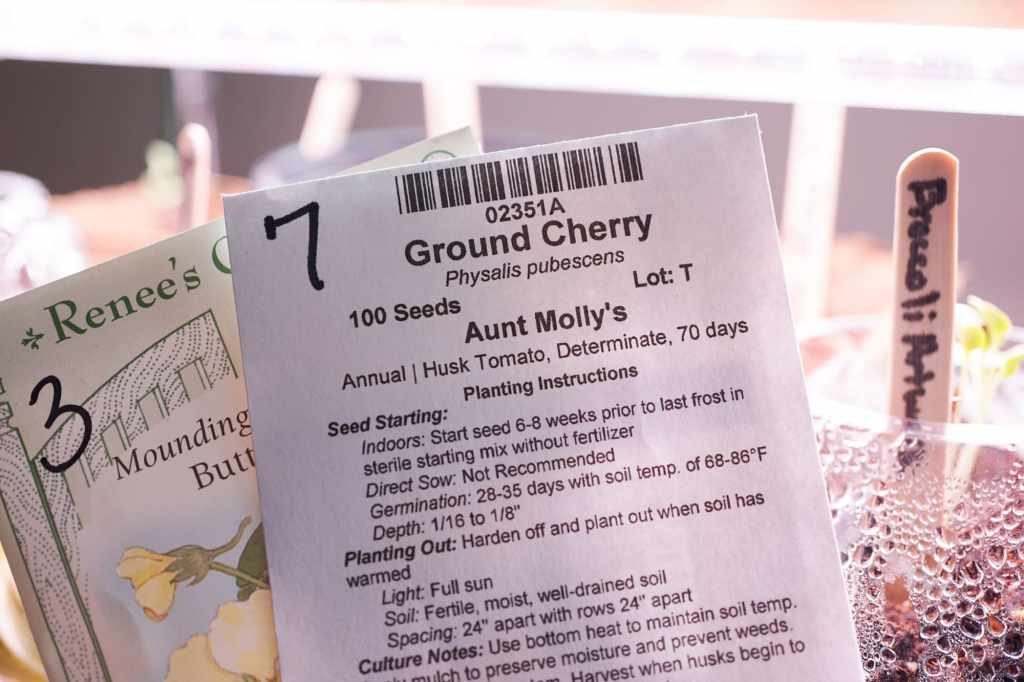 Seed Packet Growing Instructions