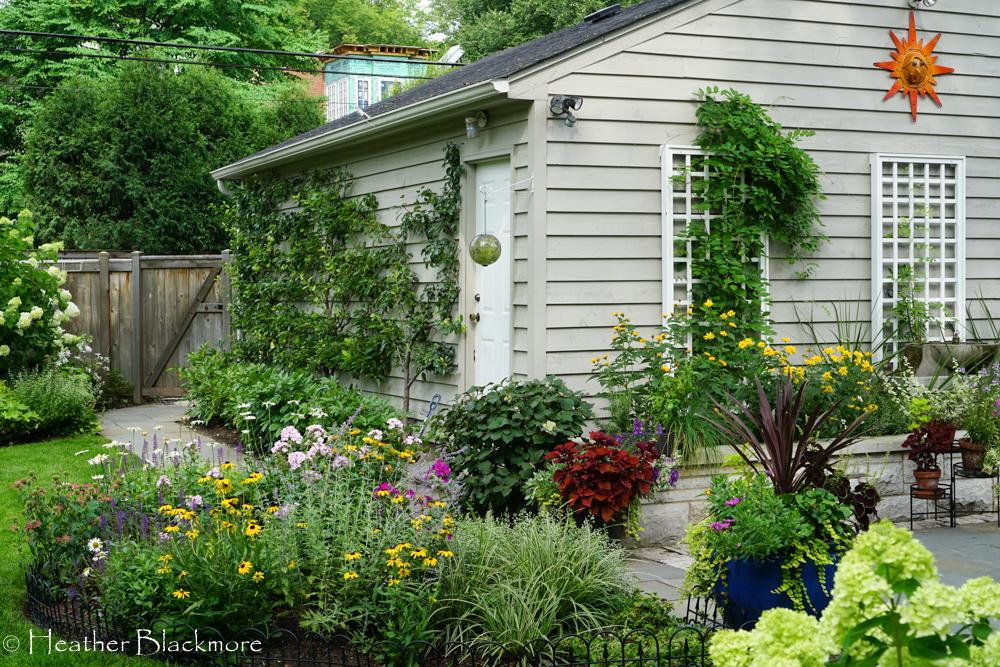 Urban Garden around garage