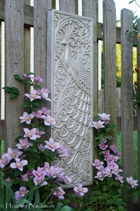 Clematis on picture garden art
