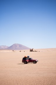 Salt Flat Tour_111