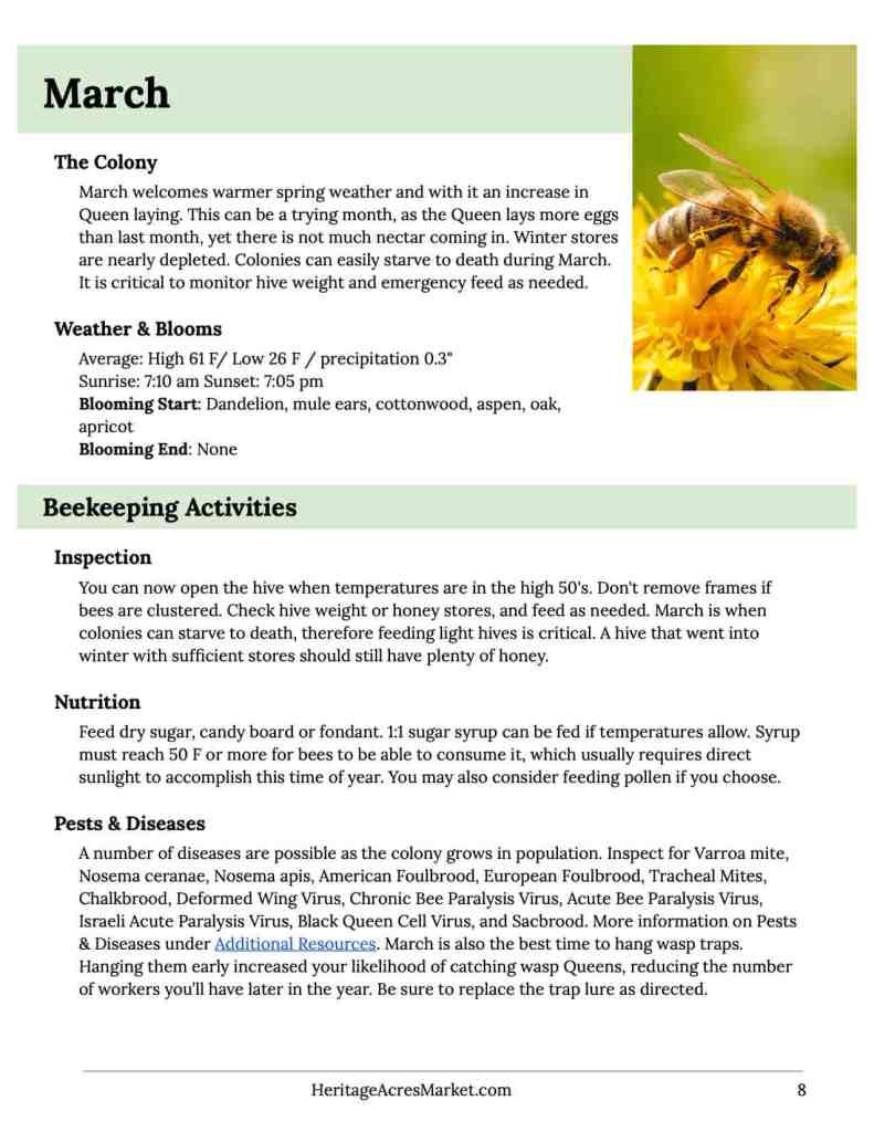 Beekeeping Calendar 2