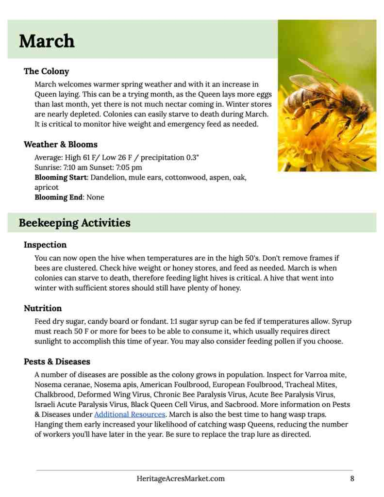 Free Insurance for Honey Bees 2