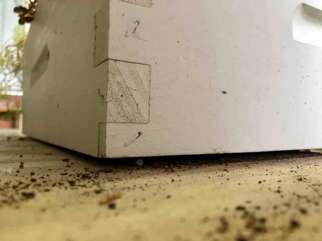 DIY Bee Hive Green Roof 5