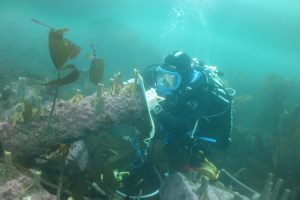 English Heritage archaeologist Mark Dunkley recording deterioration of an early iron cannon, Farne Islands.