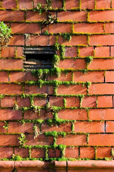IMAGE 9 Mortar decay in brickwork, Toxteth, Liverpool (c) Historic England