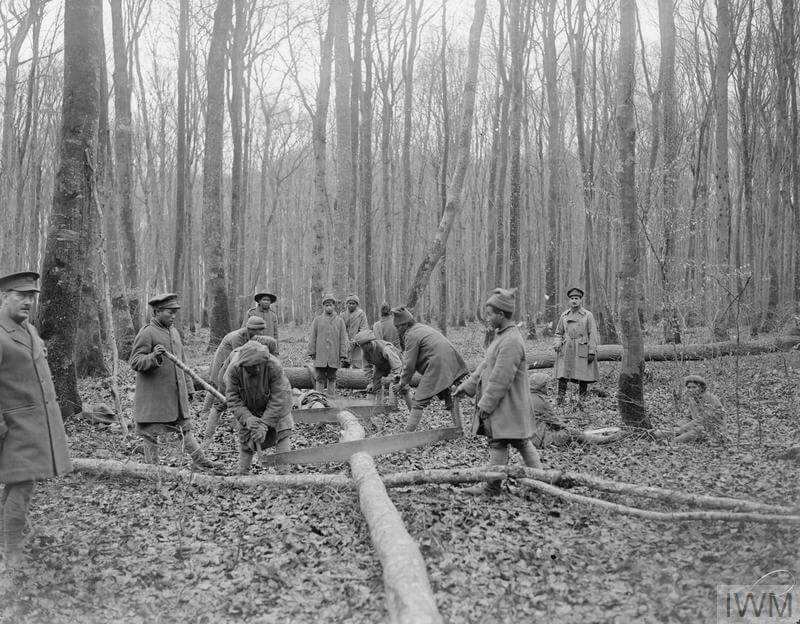 ILC men working in a forestry camp
