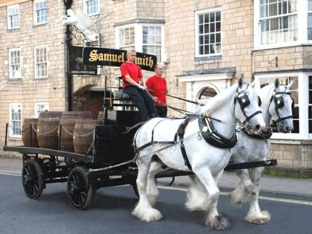 Sam Smith's Brewery shire horses pulling a cart delivering beer around the town