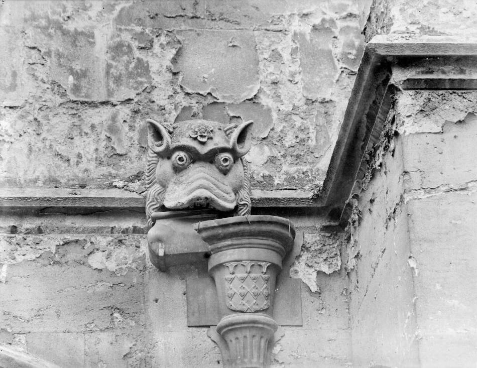 A stone gargoyle head, possible a boar, over a drainpipe in the Cloister Quad. 1900 MAGDALEN COLLEGE CLOISTER OXFORDSHIRE OXFORD OXFORD
