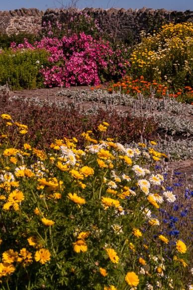 Walled Garden near Lindisfarne Castle, Holy Island