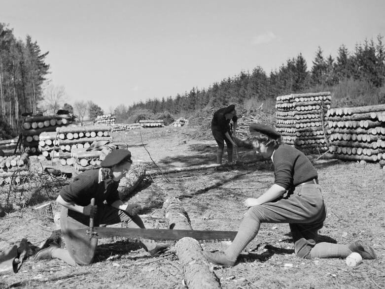 Two members of the Women's Timber Corps (WTC) saw timber