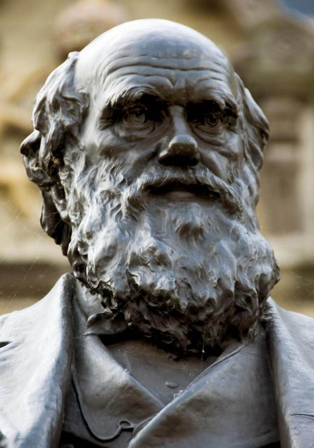 Sculpture of Charles Darwin