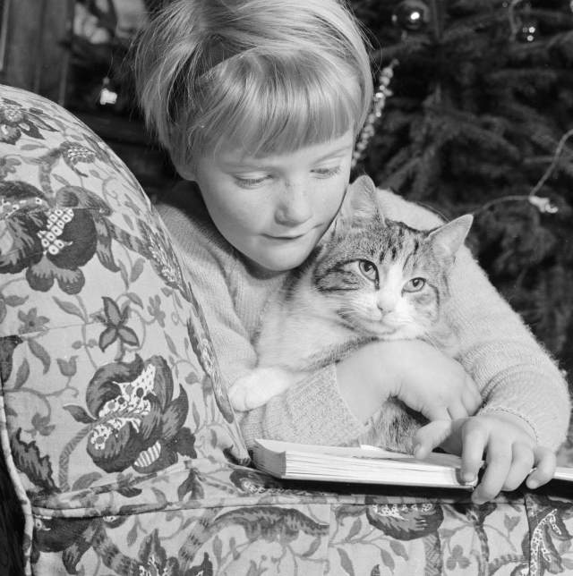Portrait of a young girl cuddling a cat while reading a book, December 1960