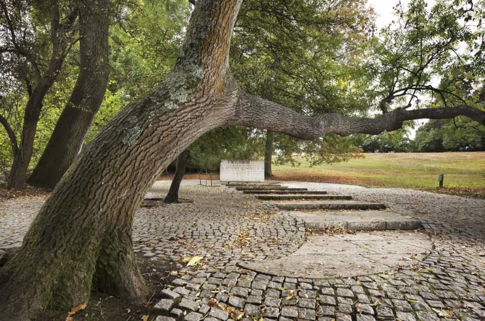 Kennedy Memorial landscape, Runnymede, Surrey © Historic England Archive DP221707