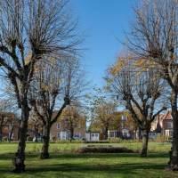 The Story of Welwyn Garden City