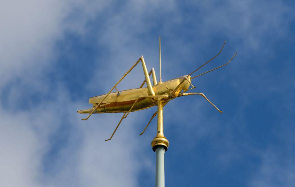 Gilded grasshopper weathervane