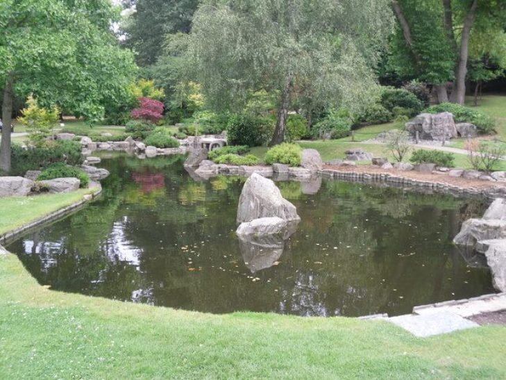 A large pond with rocks and trees around it