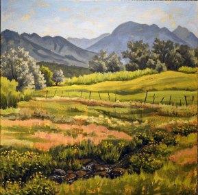 Verdant Meadow Acequia