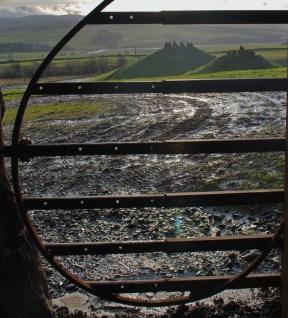 Caged Lands