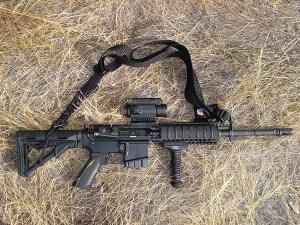 More Gun Control by Obama1